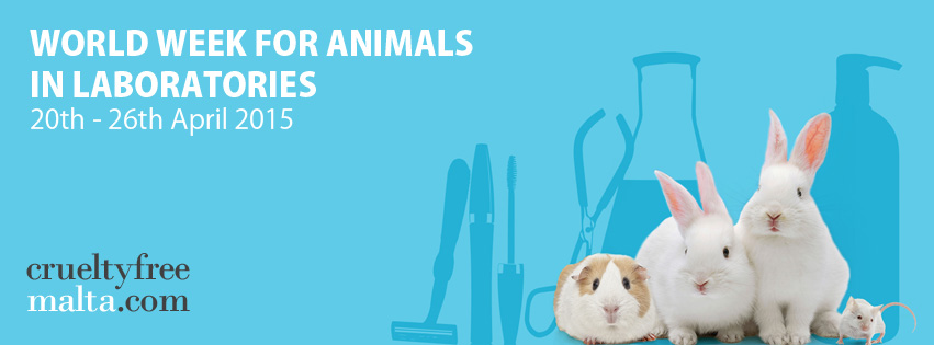 world week animals in laboratories