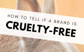 How to tell if a brand is cruelty-free?