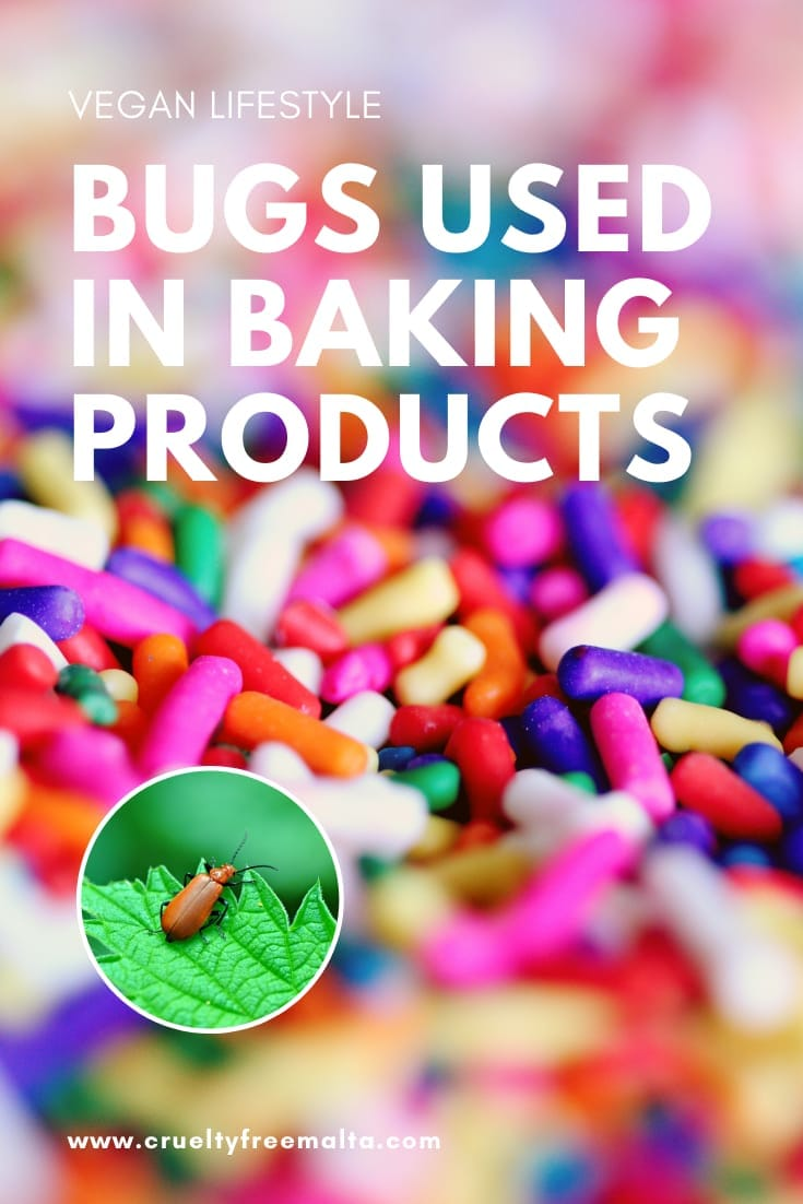Insects used in baking