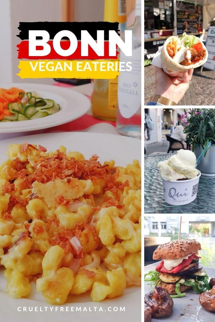 Vegan Eateries in Bonn