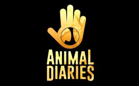 Animal Diaries on TVM Interview